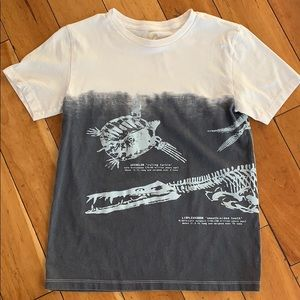 Crew Cuts boys Dinosaur shirt in good condition